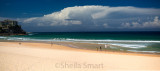 Manly Beach panorama