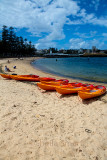 Manly with ferry and kayaks