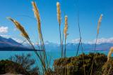 Places - New Zealand, Europe and Australia