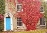 Blue Door, Red Leaves