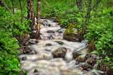 ** 75.6 - Schroeder: Creek at Shining Rocks