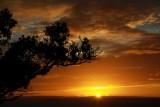 dawn in Whangaparaoa
