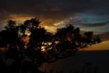 dawn in Whangaparaoa II
