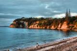 Arkles Bay, Whangaparaoa
