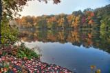 305, Larchmont Reservoir