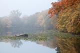 304, Larchmont Reservoir