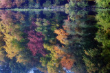 303, Larchmont Reservoir