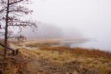 311, Marshlands Conservancy, Rye