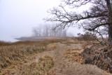 312, Marshlands Conservancy, Rye