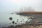 313, Marshlands Conservancy, Rye