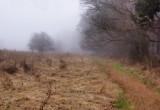 314, Marshlands Conservancy, Rye