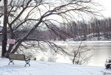 331, Larchmont Reservoir