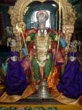 Thiru pachaivannan Navarathiri Uthsavam - Day8