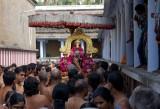 Perumal Kovil Sri Perarulalan Rathnangi Sevai & Sri Thatha Desikan Satrumurai