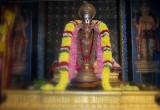 Sri Ramanujar Guru Pushya Uthsavam - Day2 Evening Yanai Vahanam