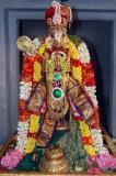Perumal Kovil sri Thirukachi Nambigal Uthsavam _nandhana