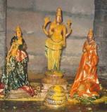 Sri Perumal during Tirumanjanam.JPG