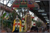 Sri Thirumangai Azwar Panguni Masa Thirunakshathra Uthsavam