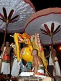 Kanchi Periya Perumal Sri Yathokthakari ( Sonna Vannam seitha perumal ) BrahmothsavamDay5 Evening - Yali Vahanam-