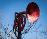 The Red French Horn