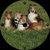 Moloney-Harmon CD clock 2