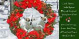 Donegan holiday card