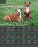 Phalon vertical calendar