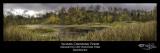 313:366Sloan Crossing Pond