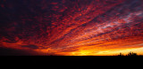 Lava Lace Sunrise