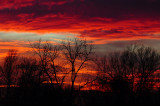Early December Sunset