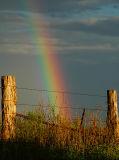 Rainbow & Fence