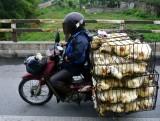 chicken to market, Uong Bi, Vietnam