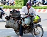 Have Goats will travel, Ben Tre, Mekong Delta, Vietnam