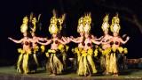 hula dancers, Old Lahaina Luau, Maui,  Hawaii