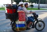 fresh catch of the day, Danang, Vietnam