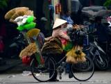 broom lady, Hanoi, Vietnam