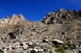 Santa Rosa Mtn, Chino Canyon, Palm Spring, CA