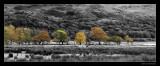 6787 Wales autumn