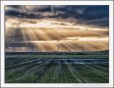 Growing Windmills