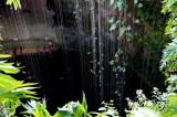 Cenote Lk-Kil,Chichen Ltza.