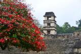 Museo de Sitio,Palenque,Mexico.