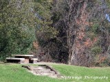 Upshur County -  Big Sandy - rural  -   US 80  rest stop