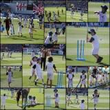 Cricket at Eden Park