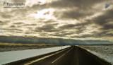 Roadside Rays