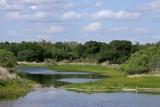 Myakka River State Park - March 12, 2012