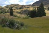 The hills near Frankton, New Zealand