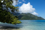 Moorea's Ta'Ahiamanu Beach on Opunohu Bay