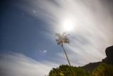 5 minute exposure; Full Moon Cook's Bay, Moorea, French Polynesia