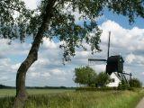 Mijnsheerenland , Oostmolen.