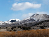 Early Spring Scene from Pocatello Creek Road Pocatello 114.JPG